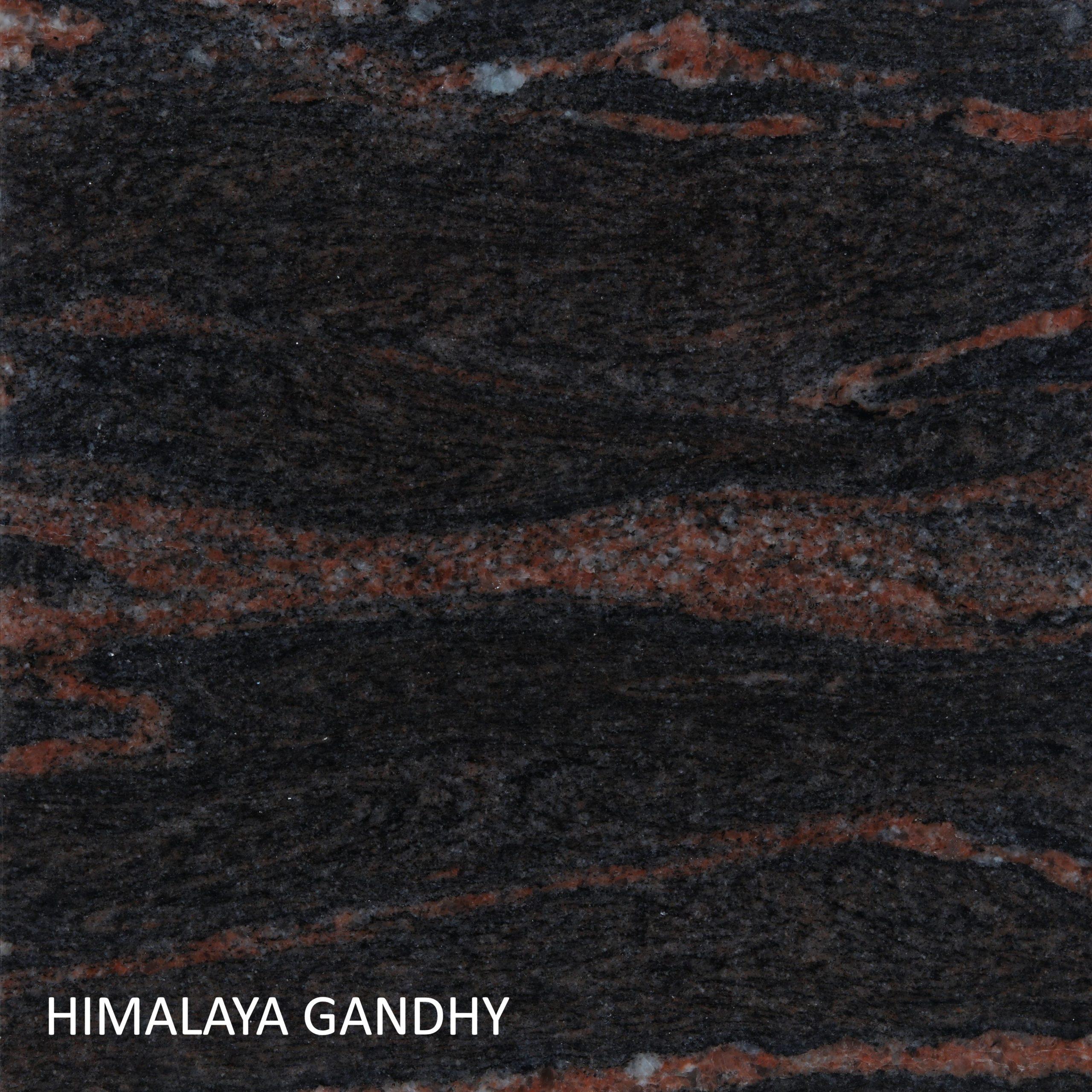 Himalaya-Gandhy